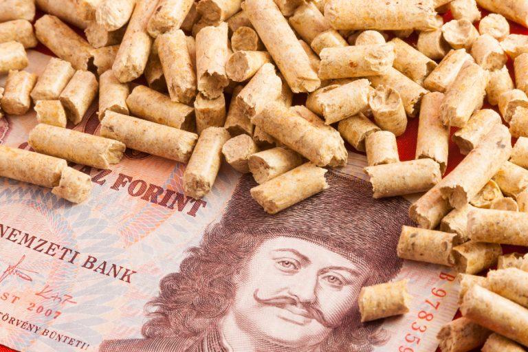 La valuta Ungherese è il fiorino