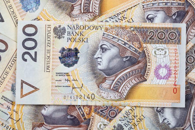 La valuta polacca è lo zloty
