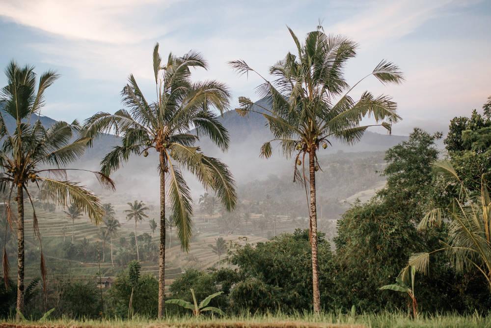 Periodo migliore per andare a Bali