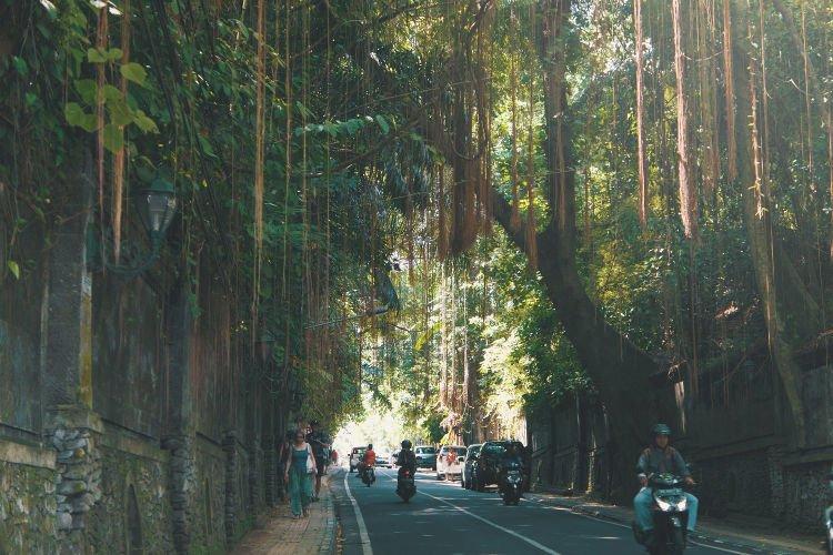 Noleggiare una moto a Bali