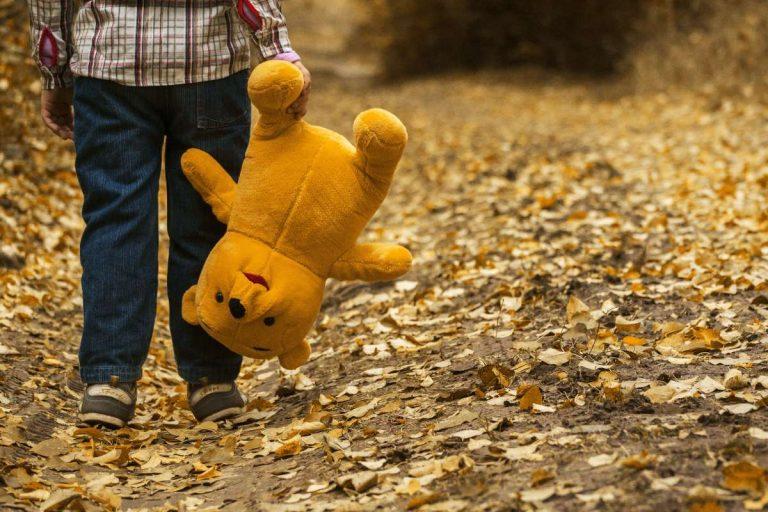Casa di Winnie the Pooh